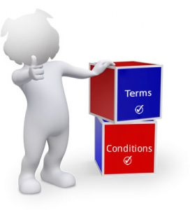 remote support terms and condtions